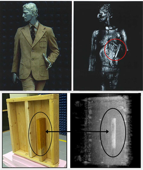 3-D Body Holographic (millimeter wave) Scanner - Available ...